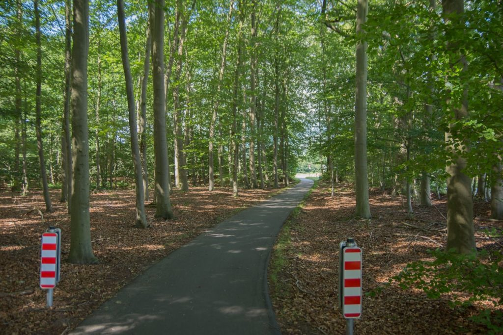 Radweg Bokelesch