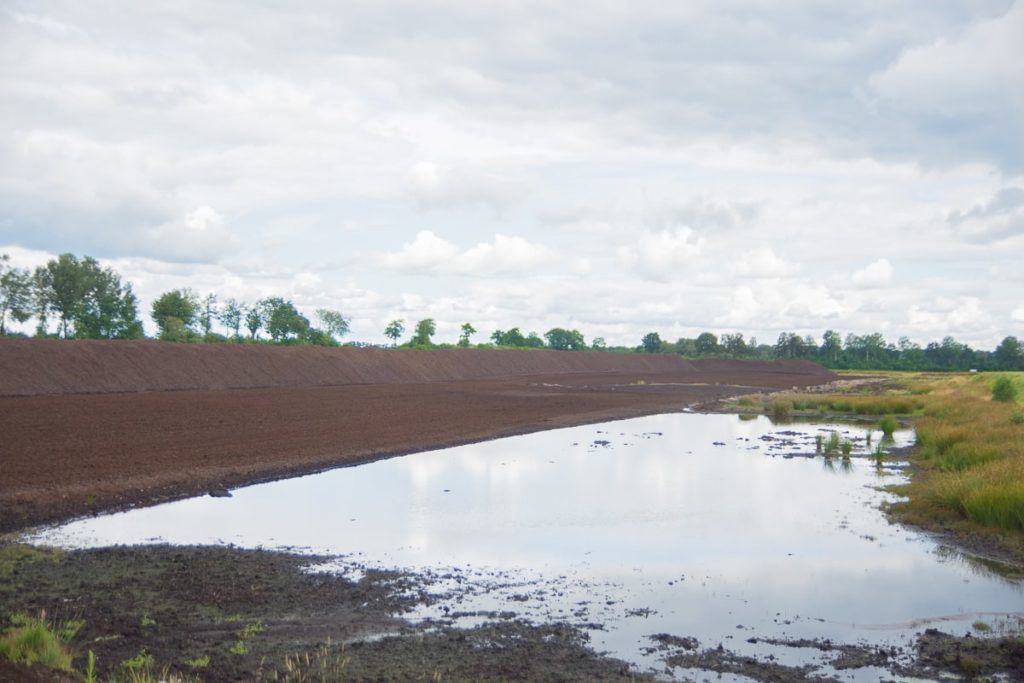 Moor Ramsloh