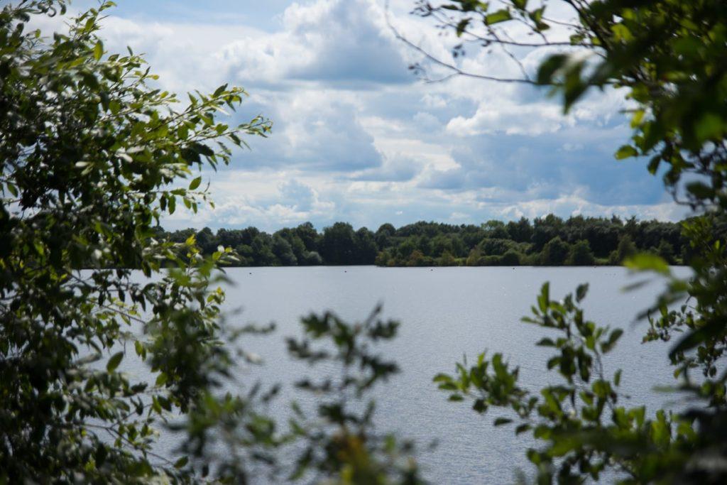 Bockhorster See